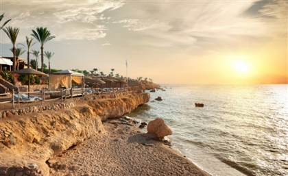 HSBC to Fund Egypt's Ecosystem Project to Restore the Red Sea Coast