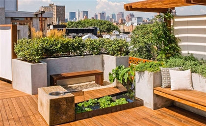Get a Crash Course on Urban Gardening on August 27th