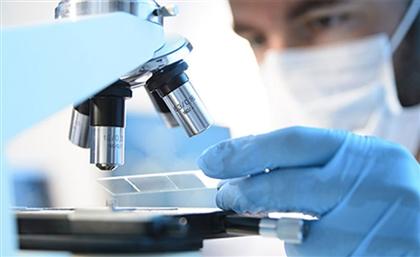 Moroccan Medtech DataPathology Raises Fresh Investment from WitamaxOne
