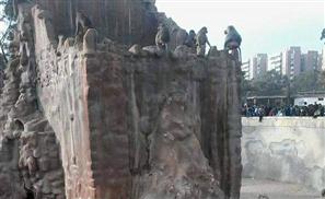 Attackers Beat Up Monkeys in Alexandria Zoo