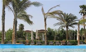7 Reasons to Take a Staycation in Sakkara