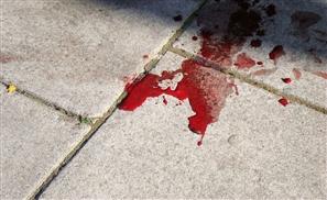 Sinai Wedding Massacre Leaves 12 Dead